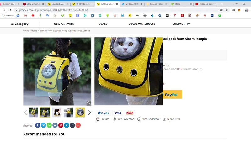 Pet Bag Cat Dog Breathable Space Capsule Backpack from Xiaomi Youpin Yellow
