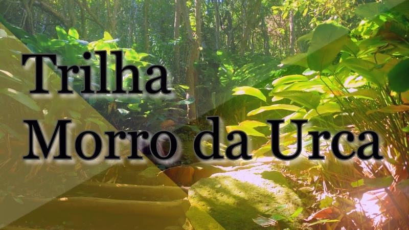 Trilha Morro da Urca Rio de Janeiro Brazil Morro da Urca Trail Sendero Morro da Urca Brasil
