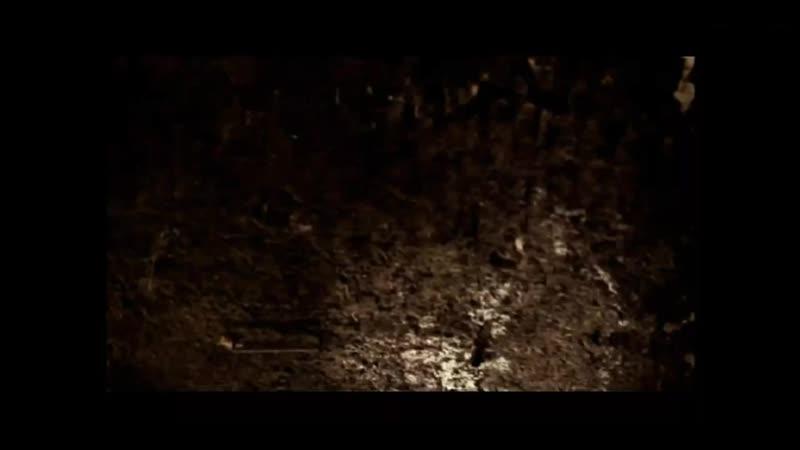 Благородная гниль момент из фильма Дом который построил Джек