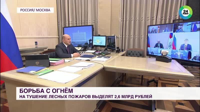 Правительство выделит более двух млрд рублей на тушение лесных пожаров