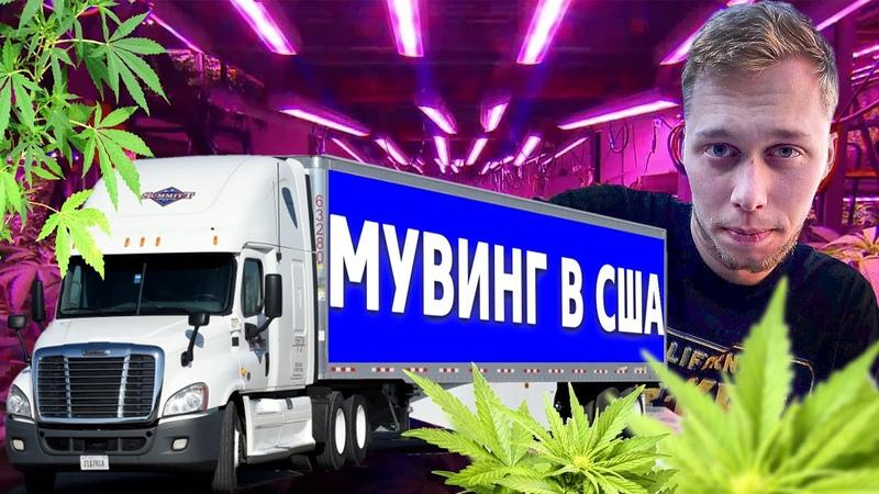 Мувинг в США Гроубокс новый бизнес Акрушер 1 18