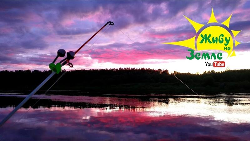 ОДИН на реке Рыбалка на ДОНКУ Огненное небо рыба и лоси ВЕЧЕР в диком месте незабываем 👍