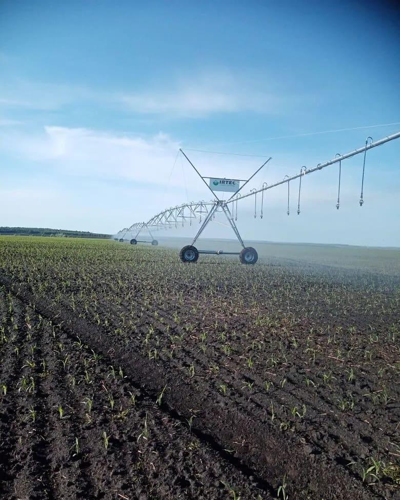 С понедельника, 15 июня, в тестовом режиме начала работу оросительная система на полях петровского фермера Валерия ЧЕРНОВА