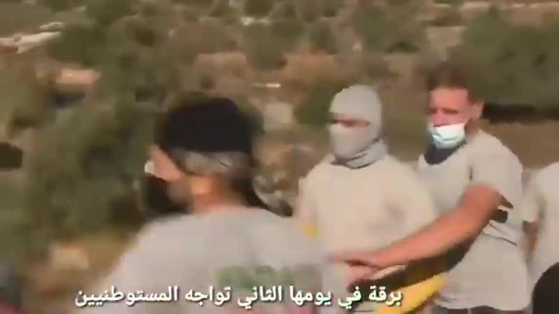 Des militants palestiniens en chemise grise ont chassé les colons israéliens