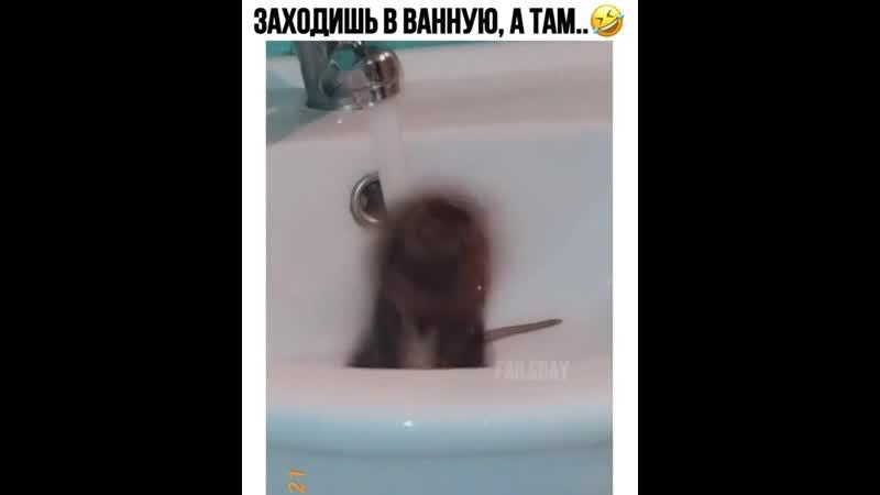 Банные процедуры🤣 Мемарик Приколы mem new юмор vine мемы новые треш
