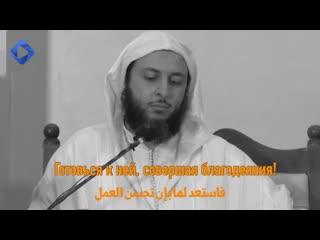 Шайх Саид аль-Камали | Зов смерти