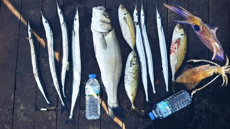 Kiş Balık Avı sezonu açıldı 🐟 KALAMAR LEVREK ISTAVRIT ZARGANA 🐟😲