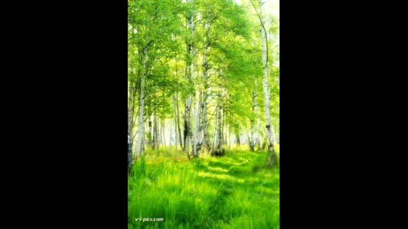 Красивая природа весной в России