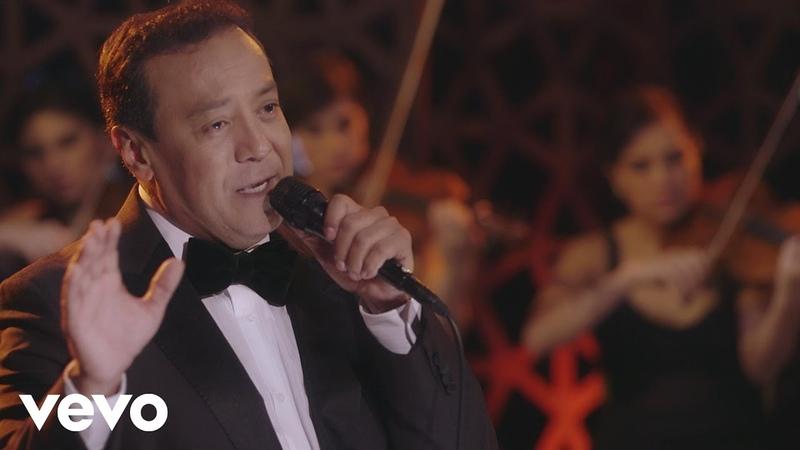 Carlos Cuevas - Cerezo Rosa