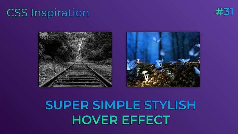Super Simple Stylish Hover Effect | HTML, CSS (SCSS)