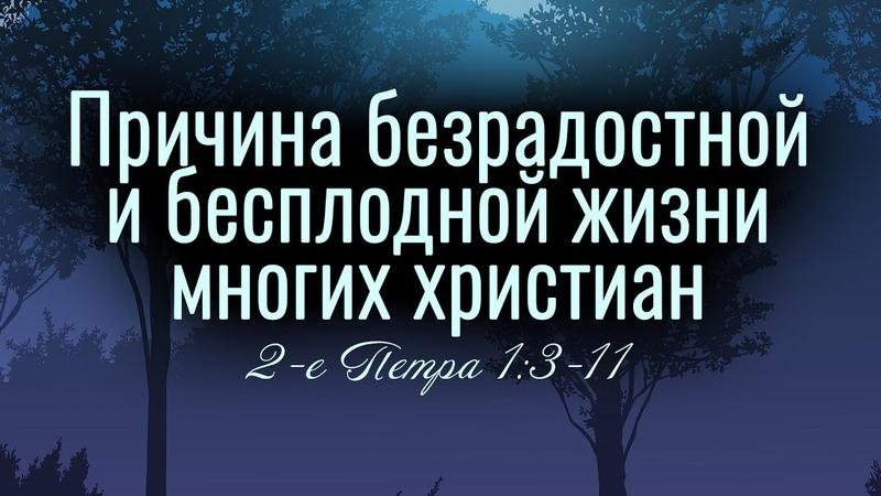 Причина безрадостной и бесплодной жизни многих христиан. 2 Петра 1 3-11. Андрей Резуненко.