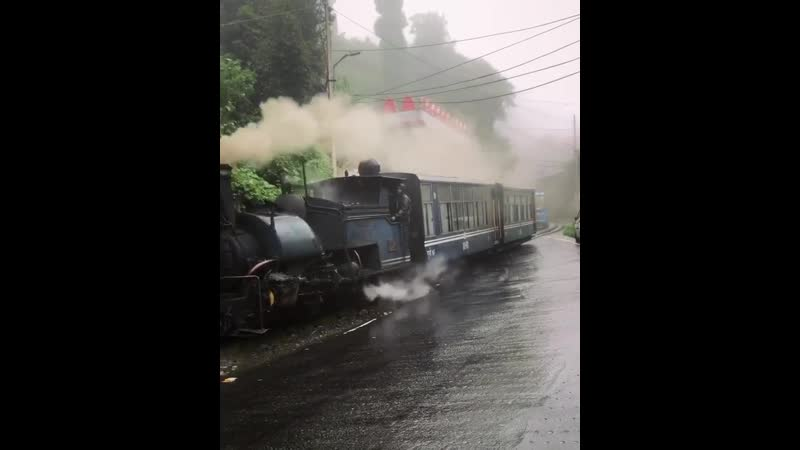 Just an old train riding along during a rainy day 🚂 Darjeeling India