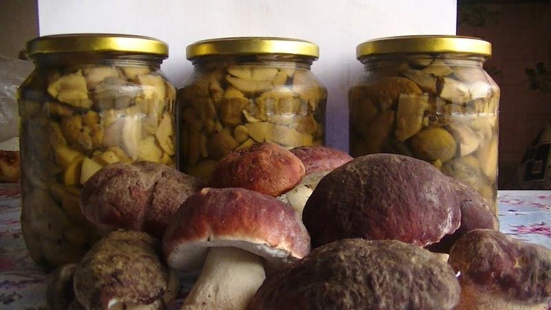 Маринованные грибы на зиму Универсальный рецепт Вкусно и просто