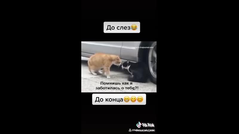 VIDEO 2020 03 18 23 10