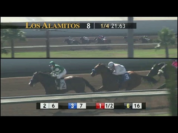 SNEAKING OUT gets to the line first in the Great Lady M 7 4 20!!