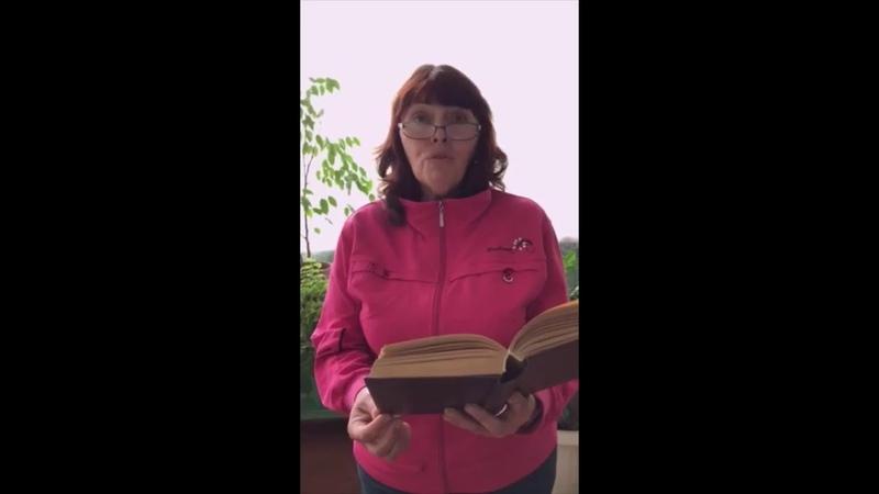 СШ№19 Читаем Пушкина Бусель Светлана Дмитриевна библиотекарь школы №19
