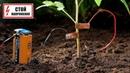 Выращивание помидоров / Улитки проч / Электричество/попробуйте этот лайфхак
