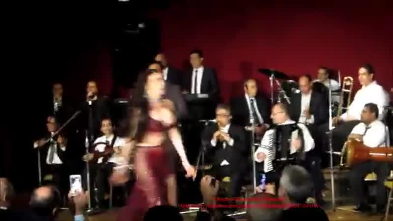 Dina Taht Al Shibak s choreography الراقصة دينا