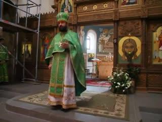о. Андреи Ткачев  Проповедь на Вход Господень в Иерусалим