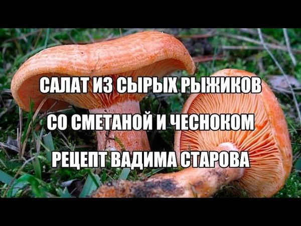 Салат из сырых рыжиков со сметаной и чесноком пошаговый рецепт Вадима Старова Энергия Жизни