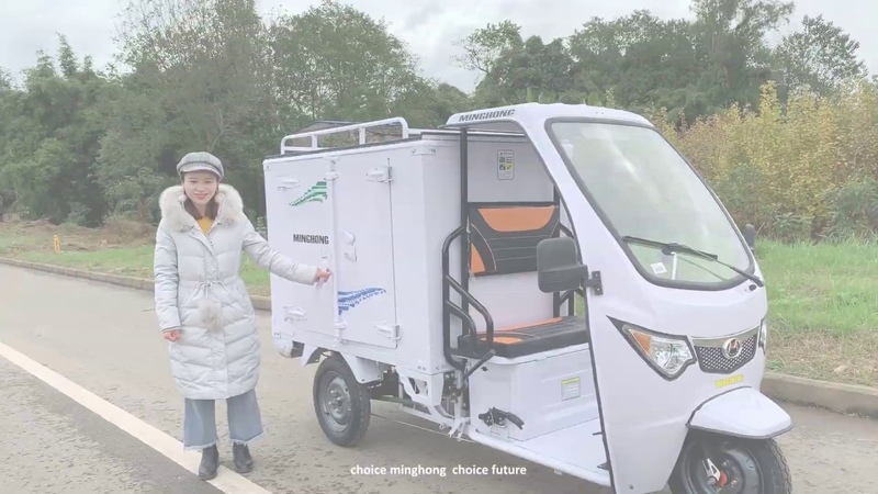 E Trike Electric Cargo Tricycle Introduce Sustainable Urban Delivery Solutions