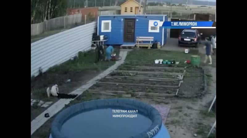 Женщина ломала чужой туалет и упала в выгребную яму. 21.05.20