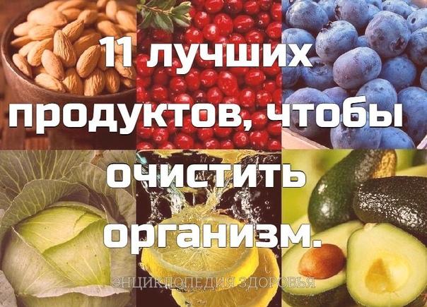 11 лучших продуктов, чтобы очистить организм.