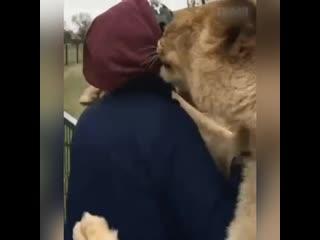 Любовь между животным и человеком она такая..