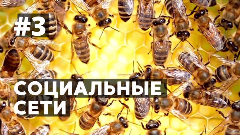 CОЦCЕТИ В РОССИИ 2020 YOUTUBE BKONTAKTE FACEBOOK ЦИФРЫ