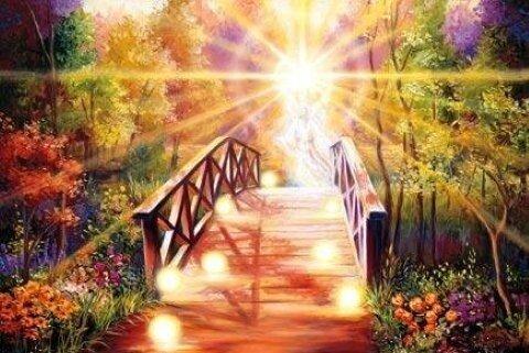 Суть духовной жизни не в том, чтобы называться индуистом, мусульманином, христианином, иудеем, буддистом, сикхом, фарси или вайшнавом
