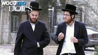 Love and Marriage in Orthodox Jewish communities    A Match Made in Heaven - Part 2/3
