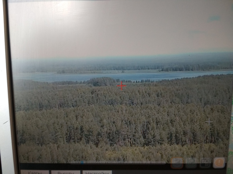 Лесной дозор, изображение №2