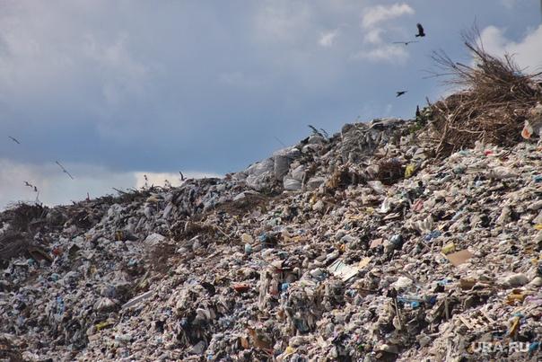 Рекультивацию мусорного полигона «Талдомский» планируют начать в 2022 году