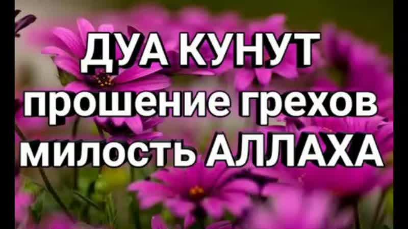 Д'УА КУНУТ 10раз