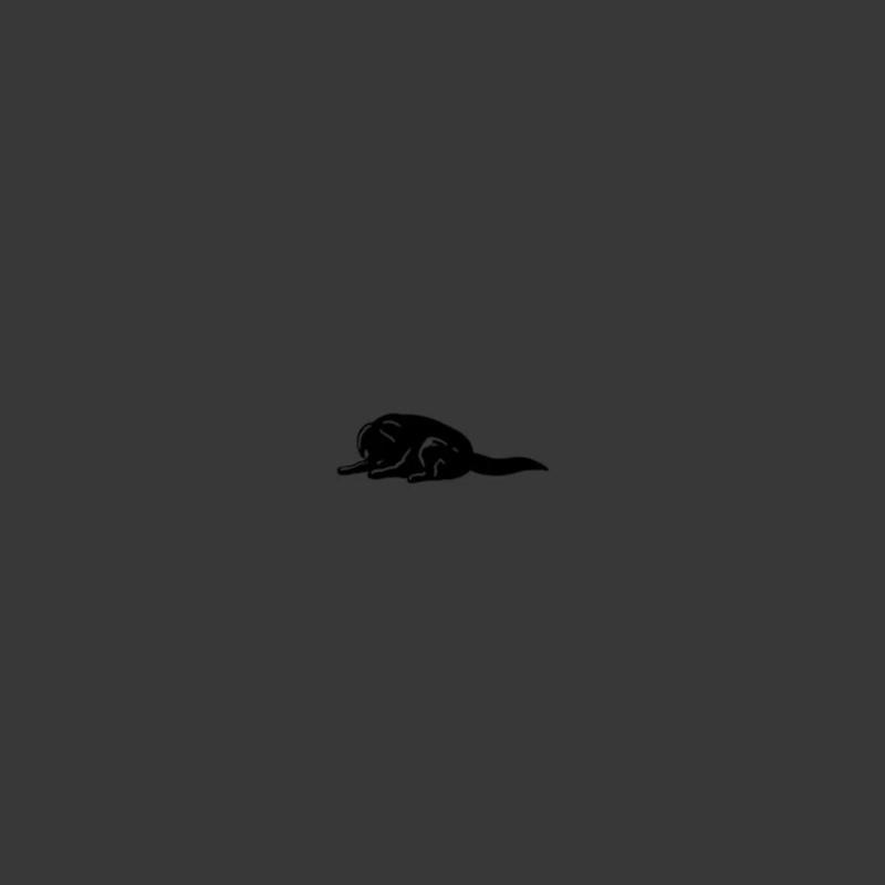Канги - Собака (сниппет)