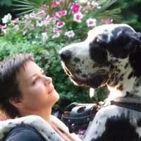 Фотография страницы Екатерины Романенко ВКонтакте