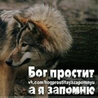 Фотография профиля Александра Редькина ВКонтакте
