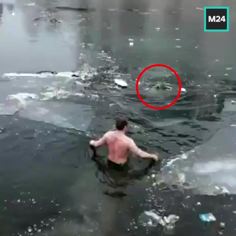 Спас тонущую собаку — Москва 24