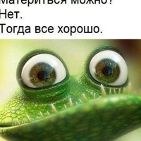 Личная фотография Сергея Тарасова