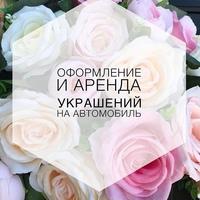 Фото профиля Виктории Алексеевой