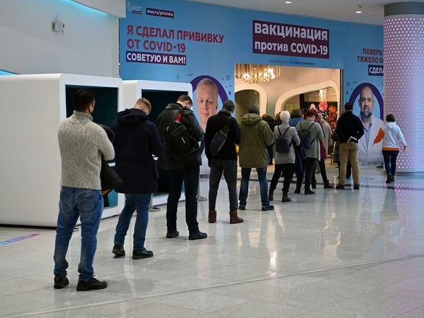Испуга от QR-кодов хватило на три дня: в Петербург...