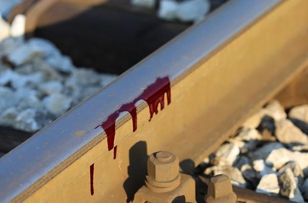 Поезд сбил человека на участке Подольск — Гривно К...