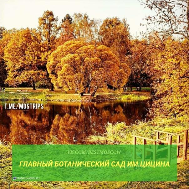 ТОП-9 красивых мест Москвы для прогулок золотой ос...