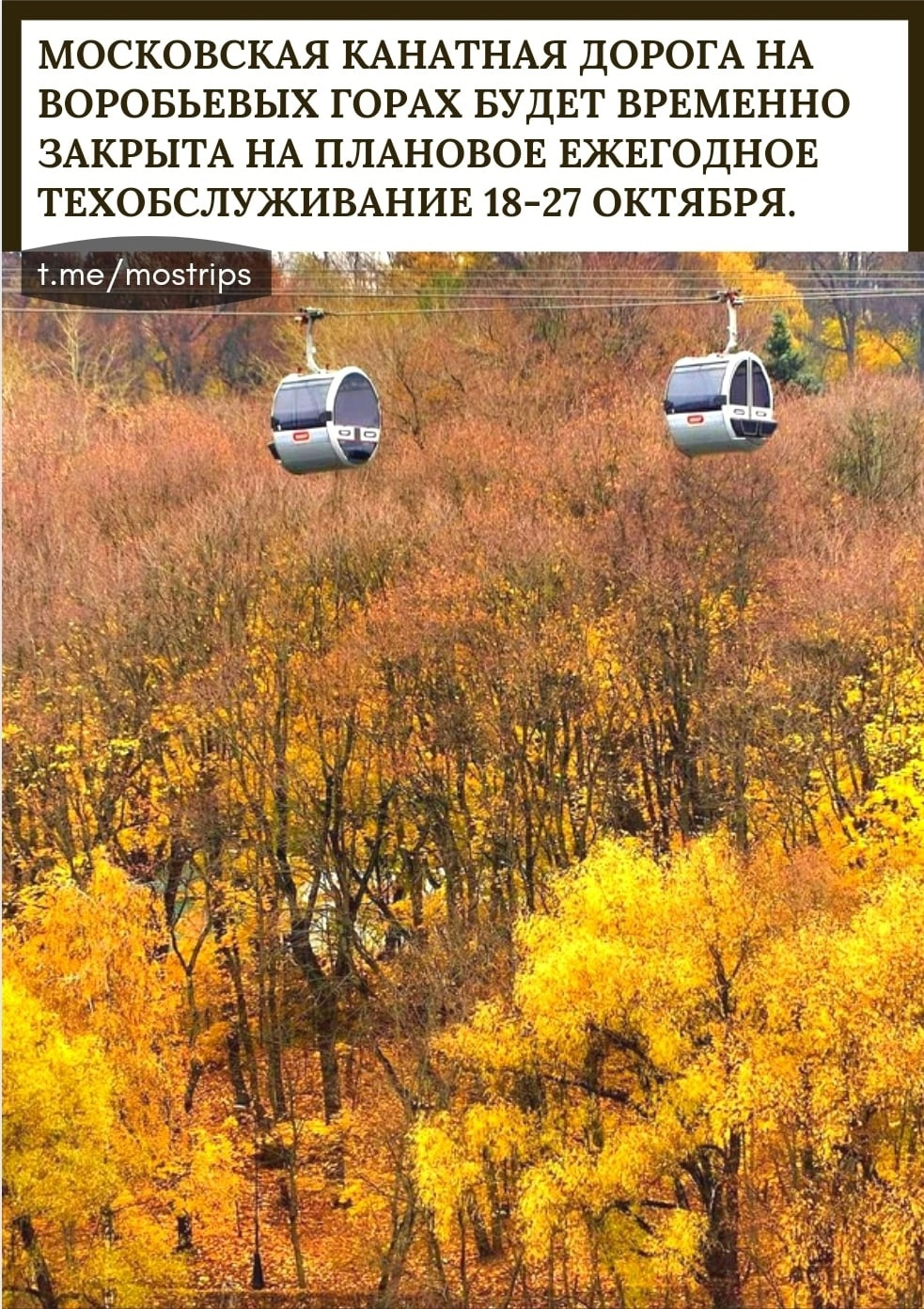 Пост Москвича номер #258014