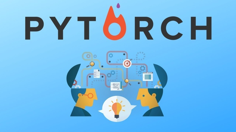 How to do transfer learning and fine tuning in Pytorch