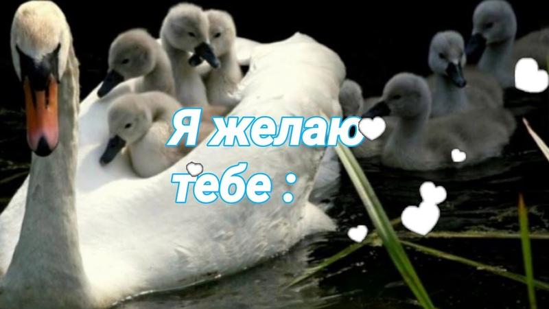 Пожелание Доброе утро Пятница Хорошего дня