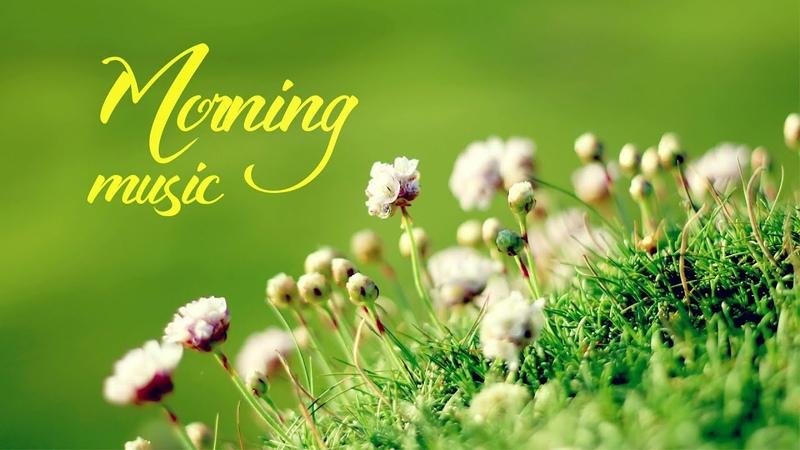 Morning Relaxing Music Piano Music Positive Music Study Music Enjoy Feeling