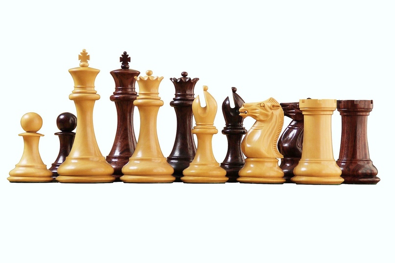 История развития шахмат, изображение №4