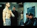 Советский боксер заключенный одолевший немецкого тяжеловеса