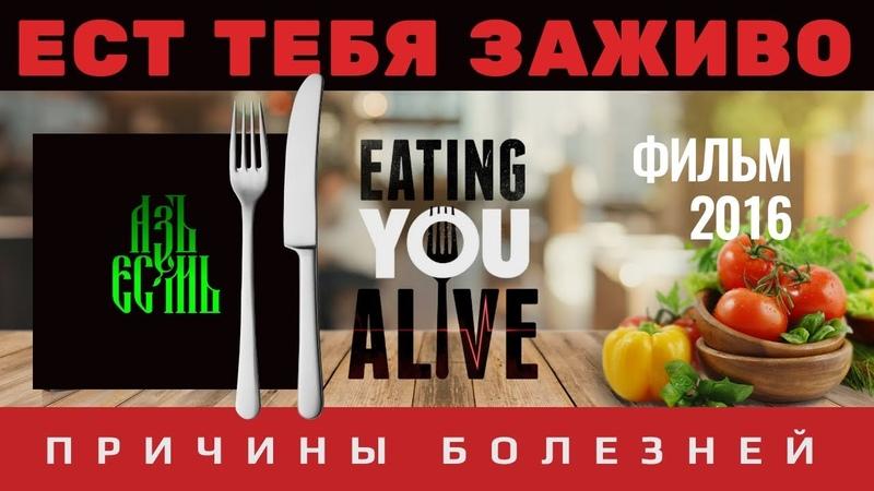 ✅ Почему медицина не лечит причины болезней ! Здоровая еда.